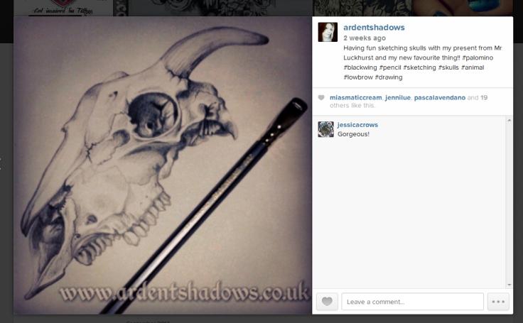InstagramScreenShot